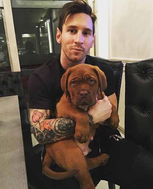Messi dog Hulk, photo